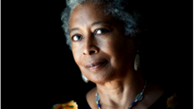 What did Alice Walker mean in the essay Beauty