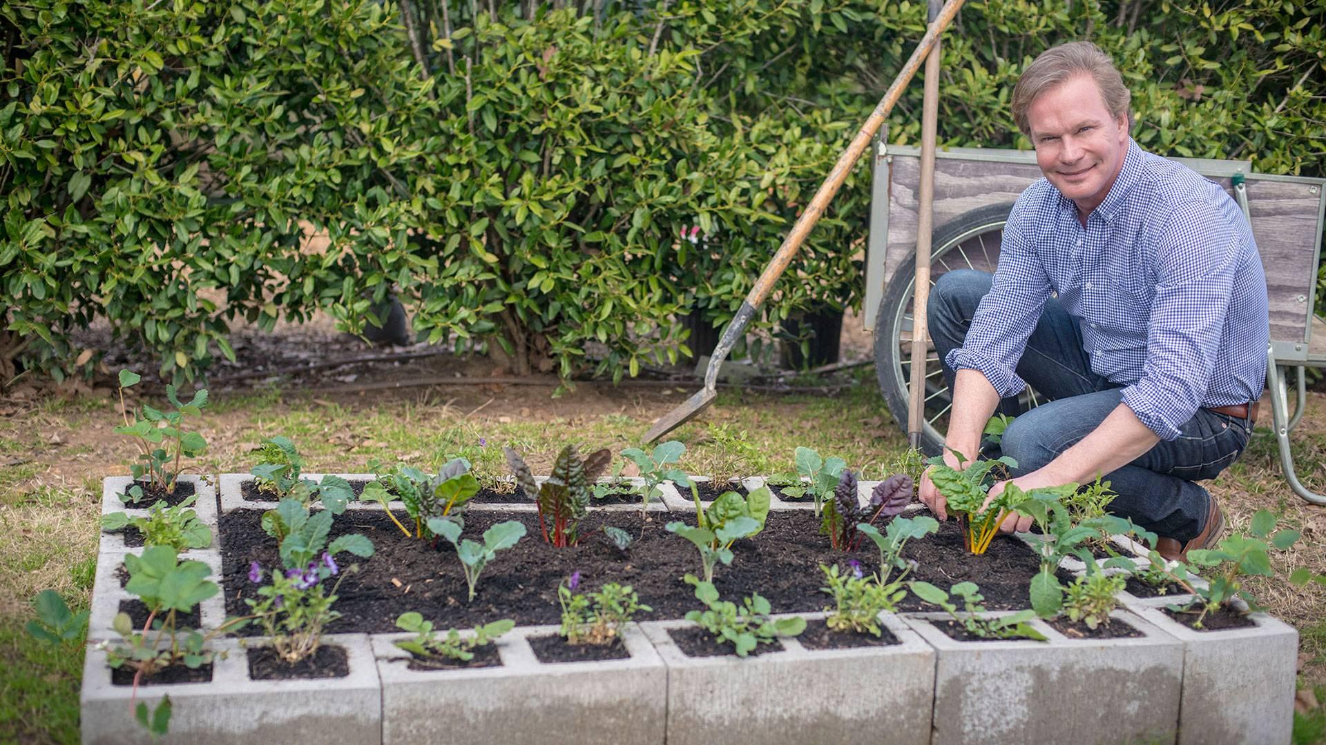 Gardening Lifestyle Nine Network Of Public Media