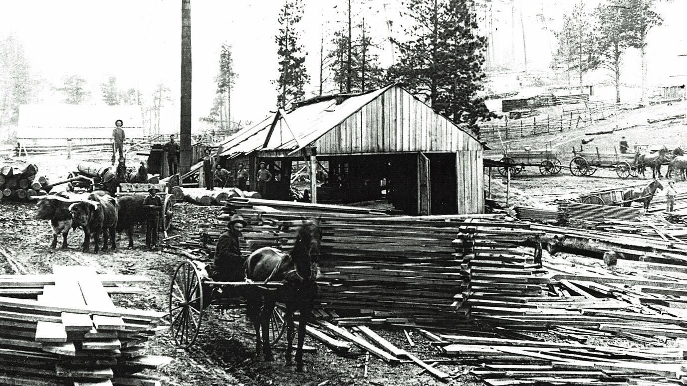 Images Of The Past The Timber Industry In The Black Hills - Us lumber industry map 1900