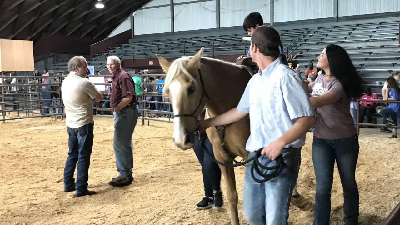 Horseback Rides Offer Benefits to Mississippians
