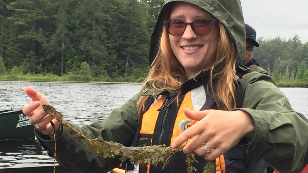 Stopping invasive species in the ADKs