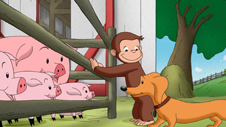 Watch Curious George Swings into Spring on WMHT