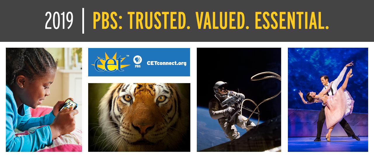 PBS 2017 Trust Brochure