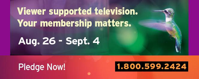 Fall 2016 TV-web-rotational-2-664x265-PLEDGE.jpg