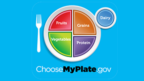 Fruits. Grains. Vegetables. Protein. Dairy. ChooseMyPlate.gov