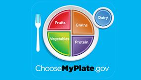 Fruits. Grains. Vegetables. Protein. Dairy. ChooseMyPlate.gov