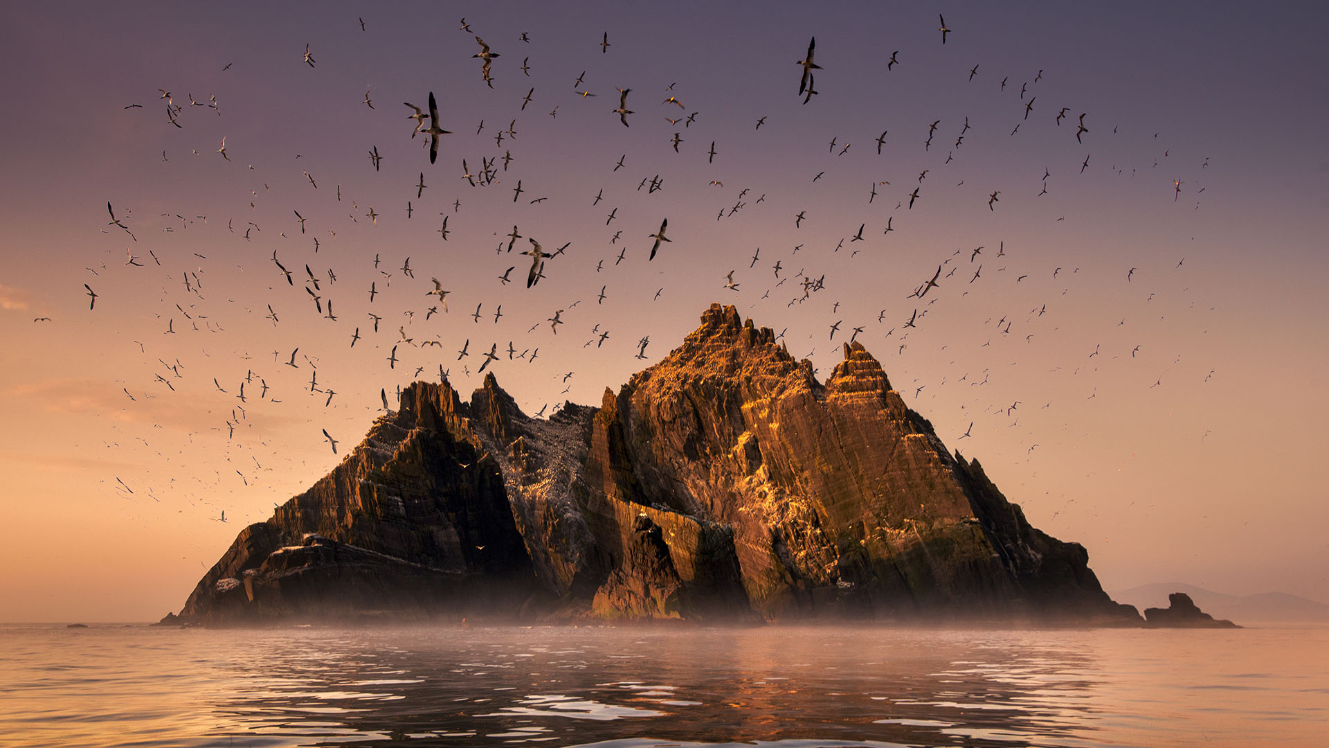 Ireland's Wild Coast | PBS Programs | PBS