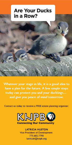 National Estate Planning Awareness Week
