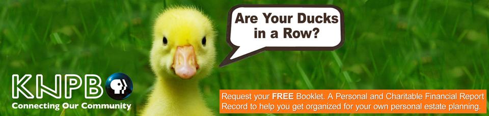 Duck-in-a-row_Web_banner_evergreen.jpg