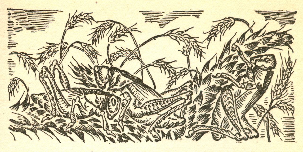"""Art from """"Let the Hurricane Roar."""""""