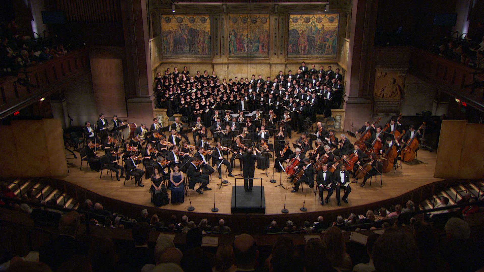 Vienna chamber orchestra ode to joy beethoven 39 s for Chambre orchestra