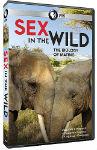 shop_sex-wild_1.jpg