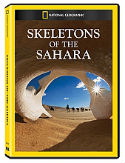 shop_skeletons-sahara_1.jpg