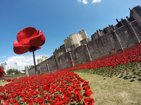 Blood-Swept-Lands-and-Seas-of-Red-poppies-installation-at-the-Tower-of-London_dezeen_468_5.jpg