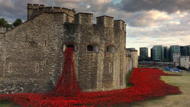 tower-london-poppies11.jpg