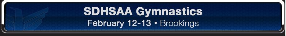Banner_Web_2016Gymnastics_920x118.png