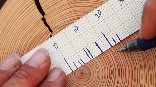 tree_rings_graph_paper.jpg