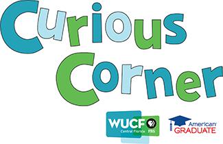 WUCF Curious Corner