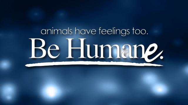 Be Humane