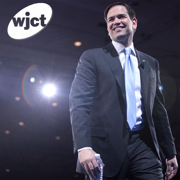 Florida's Senate candidates, profiled