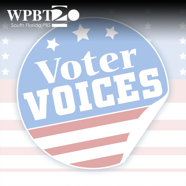 Voter Voices