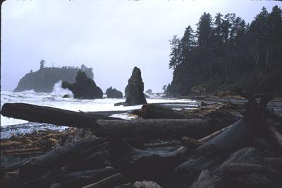 thumb_Foggy_Coast.jpg