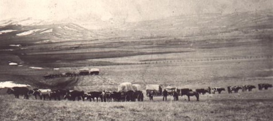 Wagons on the Bozeman Trail
