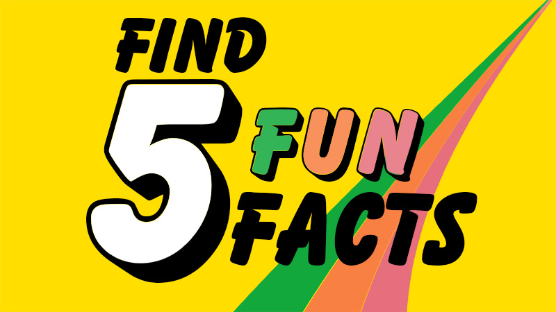 Keeping Kids Fit - Find Five Fun Facts