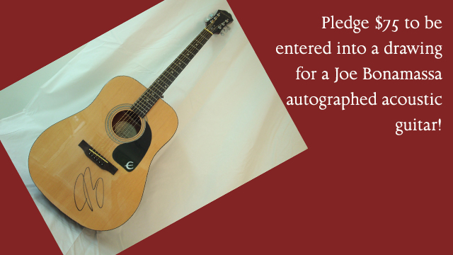 Joe Guitar Web.jpg