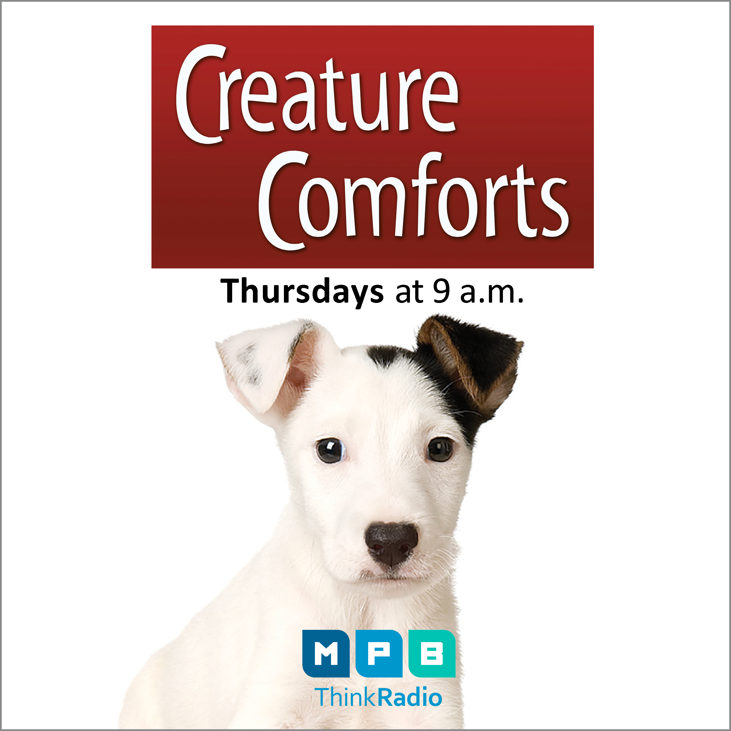Listen to Creature Comforts every Thursday at 9 am on MPB Think Radio