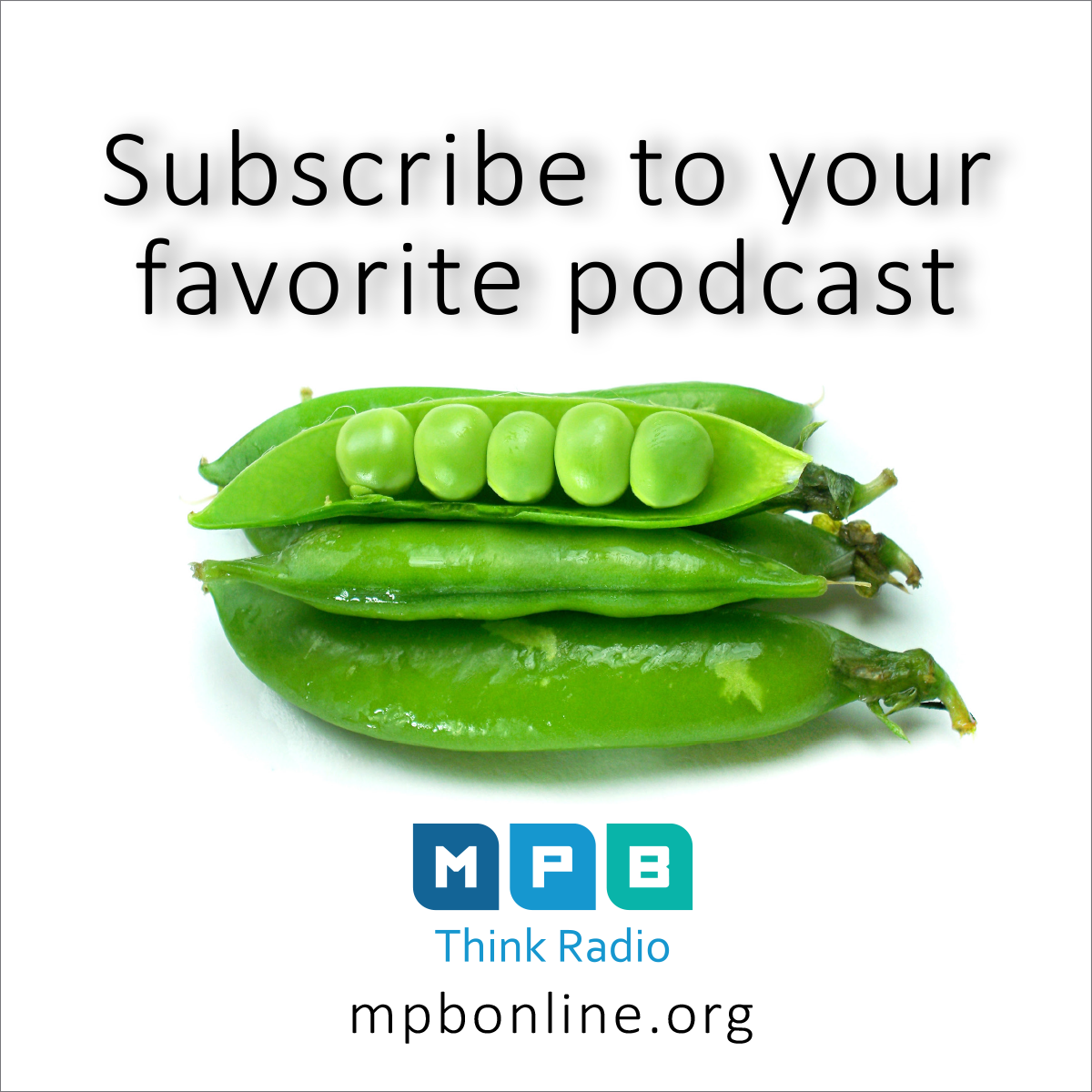 Subscribe to your favorite MPB Radio show podcast.