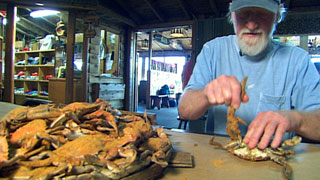 Eatin' Crabs Chesapeake Style