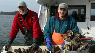 Chesapeake Bay Conservation