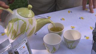 Tea from Loose Tea Leaves