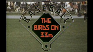 The Birds on 33rd