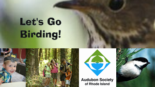 asri_may15_birding_320.png