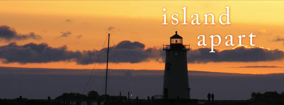 banner_islandapart.jpg