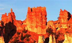 NATIONAL PARKS TOUR – Bryce Canyon and Zion, Utah