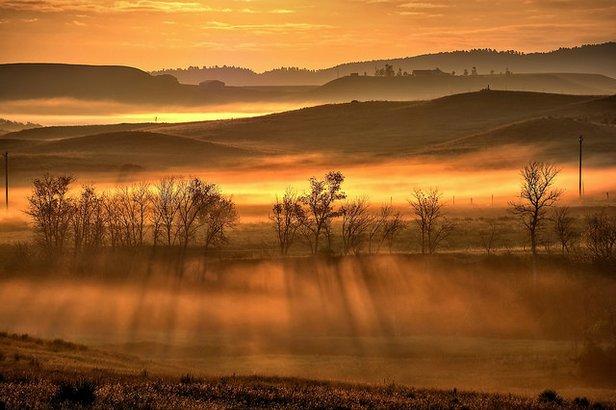 Golden Hour.jpg