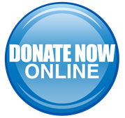 Image - DonateOnline.png