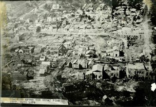 deadwood after the 1879 fire