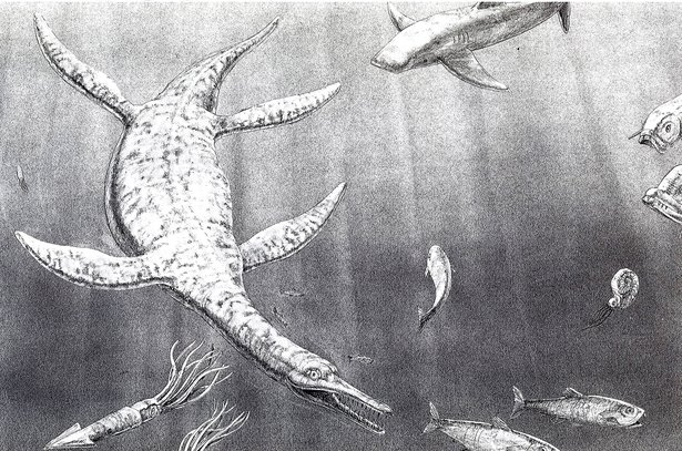 Plesiosaur Illustration by DHI Exhibits Director, Darrel Nelson