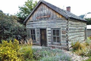 Dr. flick log cabin