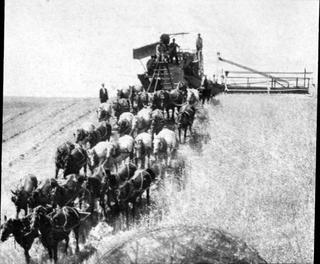 horses pulling harvest equipment