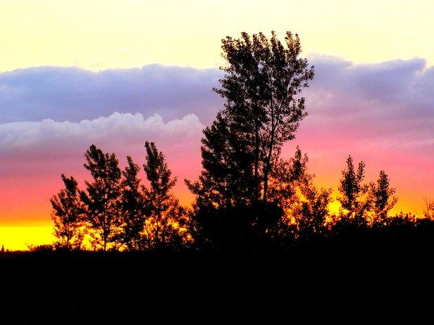 Painted Prairie Sky.jpg