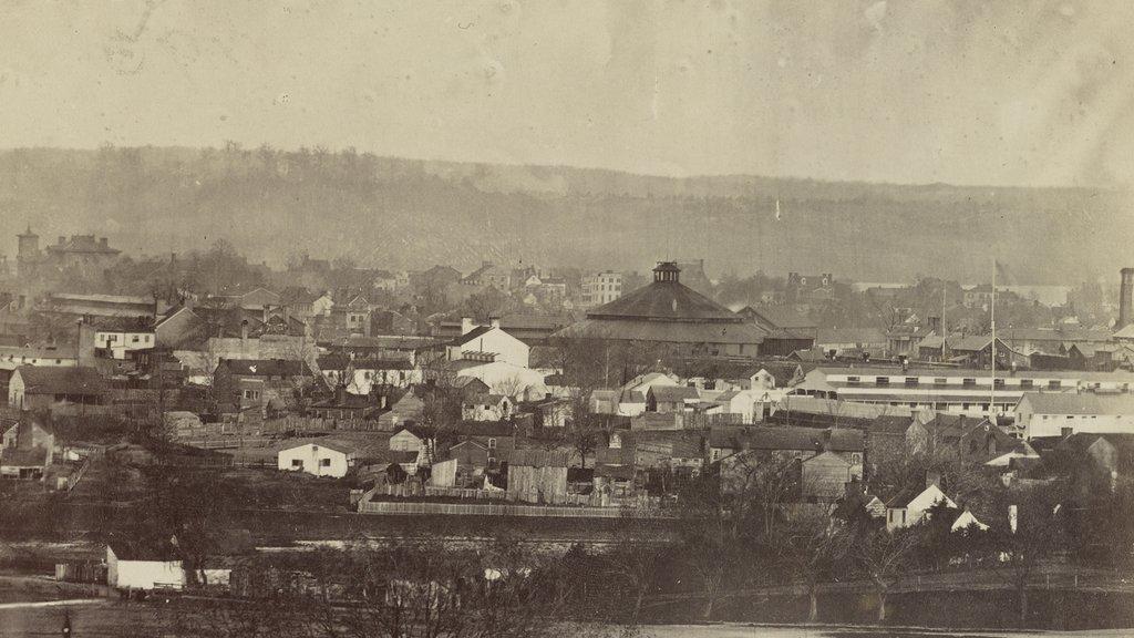 Photograph shows bird's-eye view of Alexandria, Va. (circa 1861-1865)