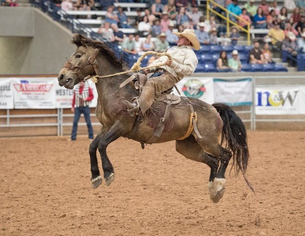 Coors Cowboy Club Ranch Rodeo action begins Friday.