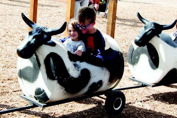 Maxwell's Country Family Fun & Maze is open through Oct. 30.