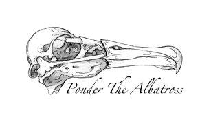 Ponder The Albatross