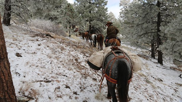 """Cowboys make a snowy climb in """"Unbranded"""""""